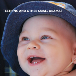 Teething and Other Small Dramas
