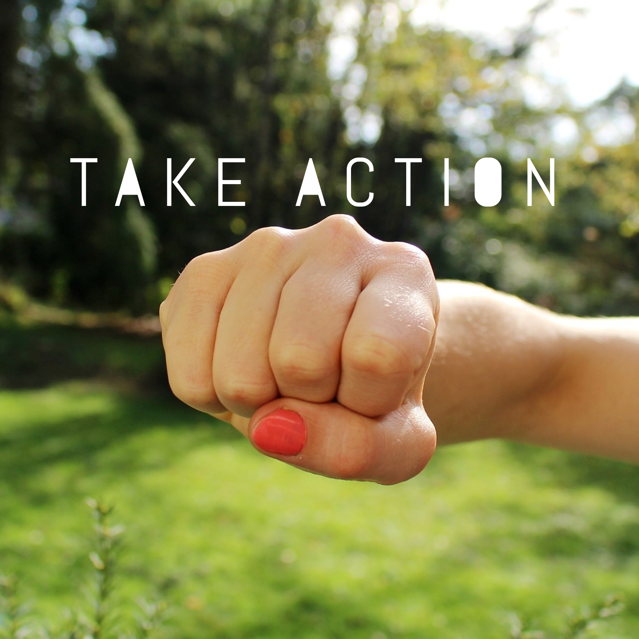 Take Political Action